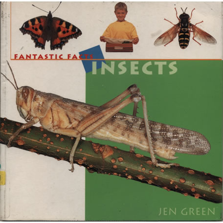 Fantastic Facts Insects by Jen Green