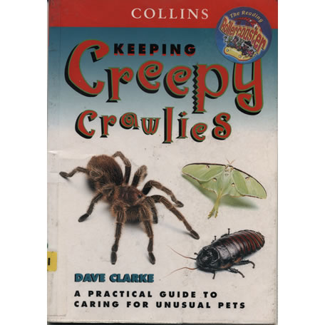 Keeping creepy crawlies by Dave Clarke